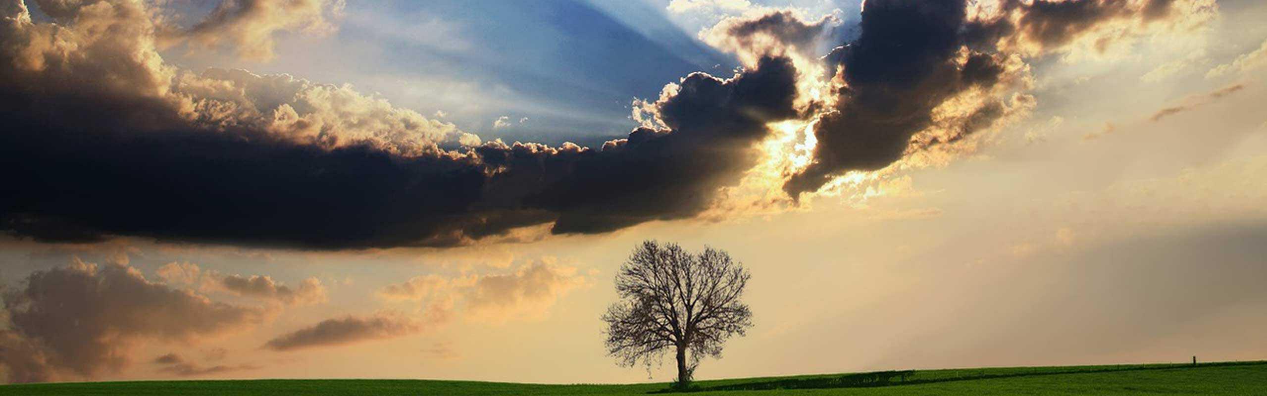 Descubre cómo hacer fotos de paisajes naturales sin utilizar filtros